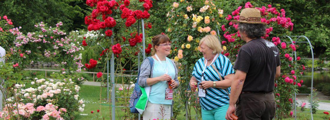 Rožni dan v Arboretumu – Slovenski dan vrtnic, 14. junij 2019