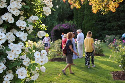Srečanje s svetovno znanim žlahtniteljem vrtnic Thomasom Prollom