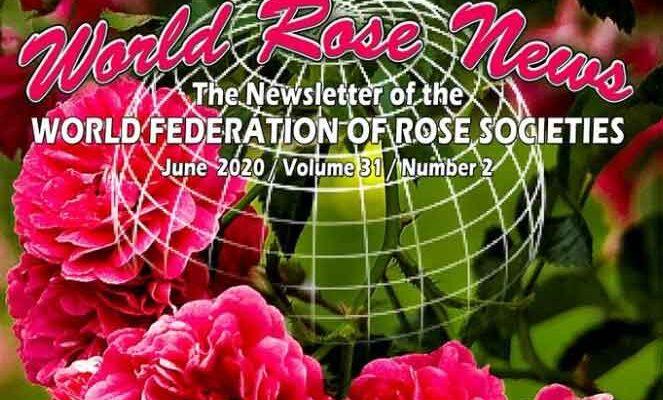 Novice iz rožnega sveta