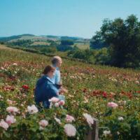 Film o vrtnicah